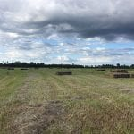 Large open field with cloudy sky