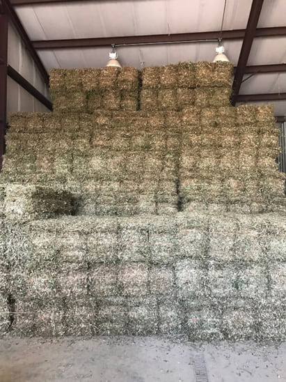 Large stacks of hay in storage area